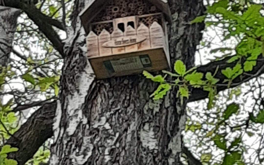 Obserwacje przyrodnicze wLeśnym Zakątku- kl. IIc Szkoły Przysposabiającej doPracy
